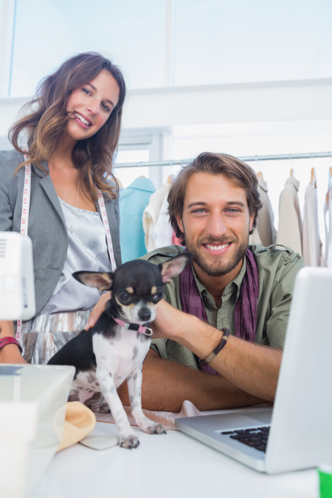 Pet fashion designer at the atellier